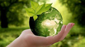 BTP Green, ecco i titoli di Stato italiani per la transizione ecologica