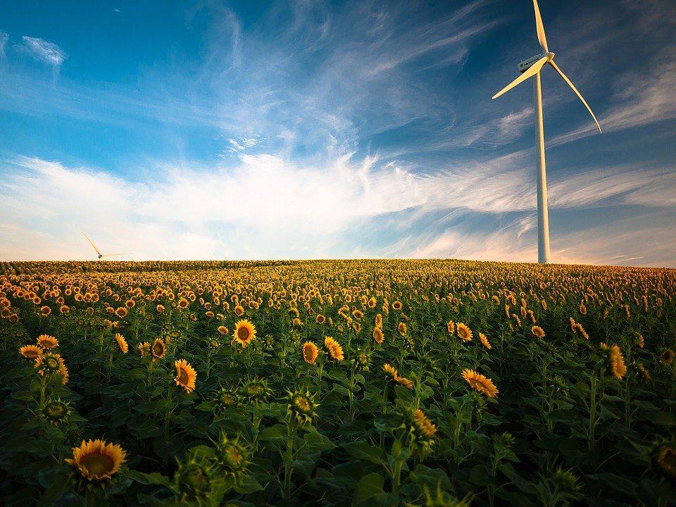 Fonti rinnovabili, ERG fornirà a TIM energia 100 green 10 anni